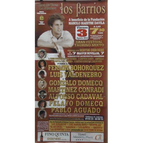 PLAZA TOROS LOS BARRIOS 3AGOSTO2012ME190X90